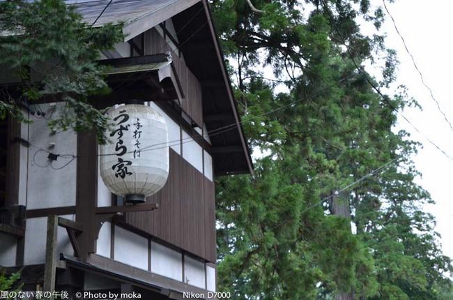 20110829-31_togakushi-adumino062.jpg