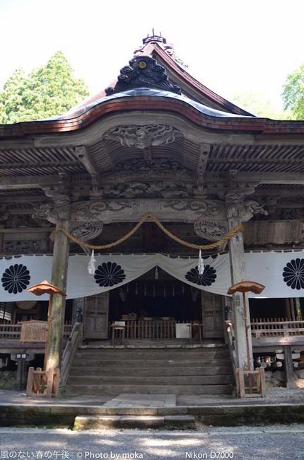 20110829-31_togakushi-adumino099.jpg