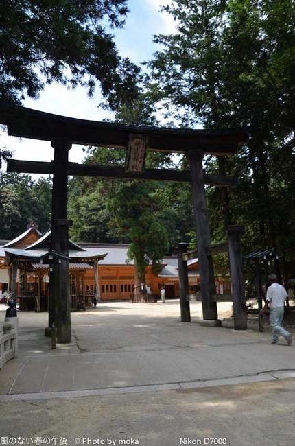 20110829-31_togakushi-adumino143.jpg