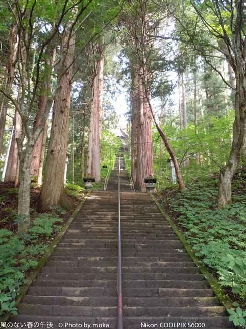 20110829-31_togakushi-adumino253.jpg