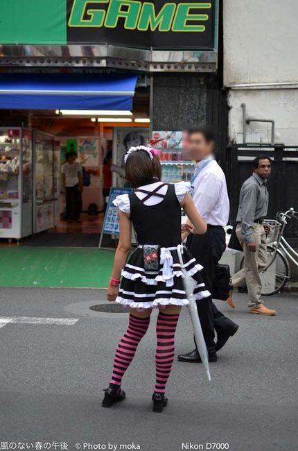 20110901_akihabara06.jpg