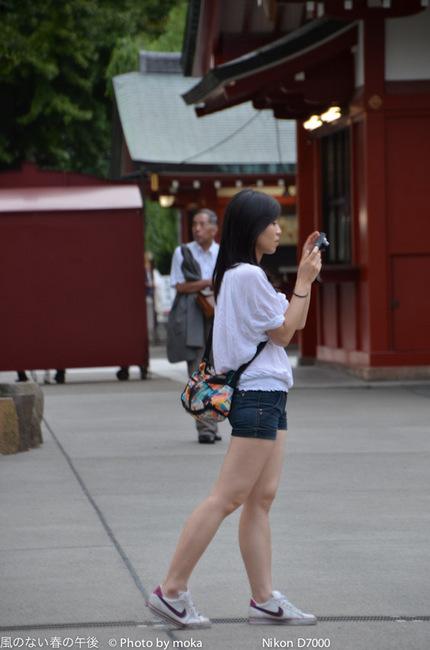 20110904_sensouji36.jpg