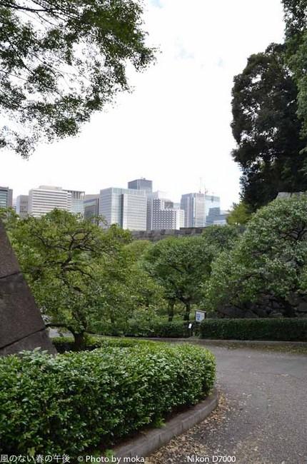 20110925_koukyo26.jpg