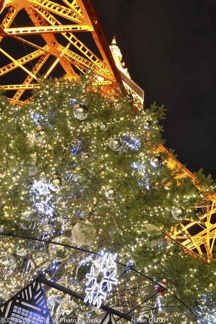 20111122_tokyotower24.jpg