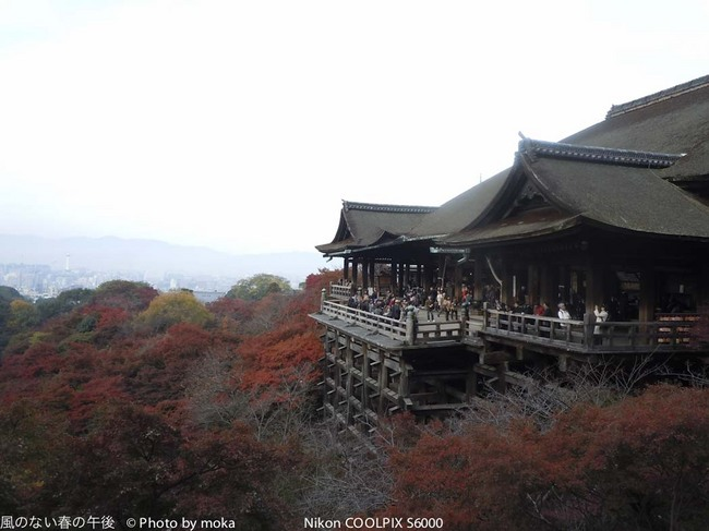 20111127-29_kyoto166.jpg