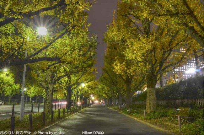 20111128_gaienmae06_-2_tonemapped.jpg