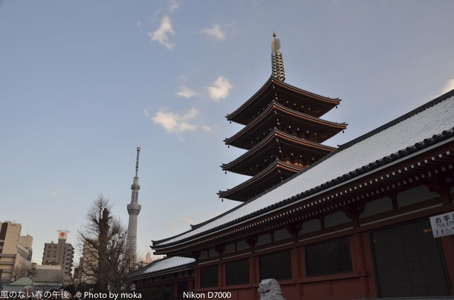 20120128_asakusa41.jpg