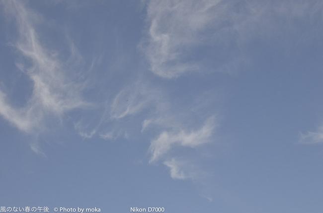 20120221_yumenoshima17.jpg