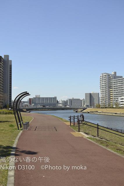 20120313_toshima07.jpg