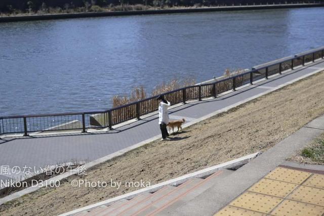 20120313_toshima08.jpg