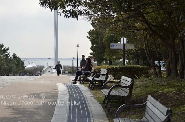 20120326_kasairinkai-park25.jpg