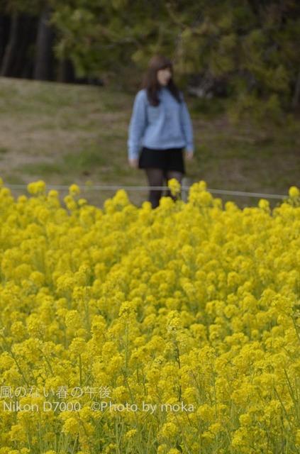20120326_kasairinkai-park32.jpg