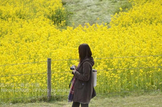 20120326_kasairinkai-park44.jpg