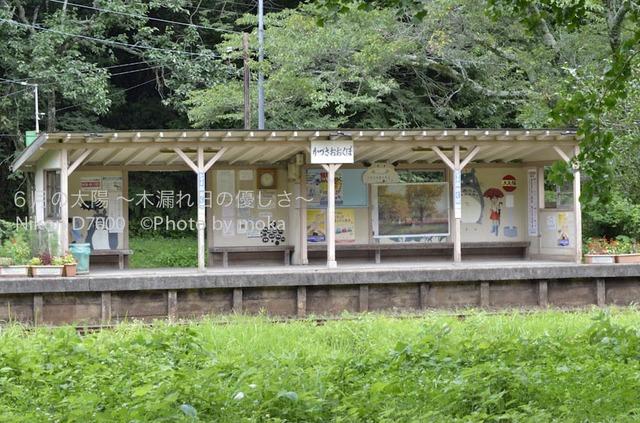 20120723_youroukeikoku19.jpg