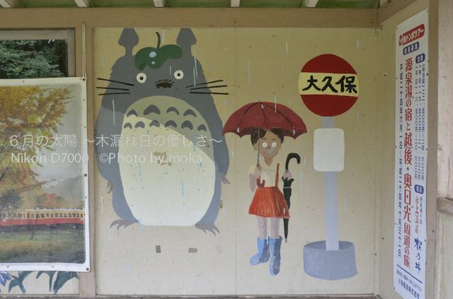 20120723_youroukeikoku24.jpg