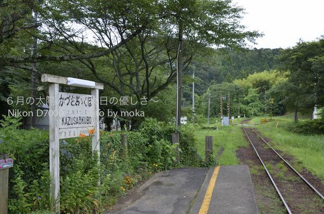 20120723_youroukeikoku47.jpg