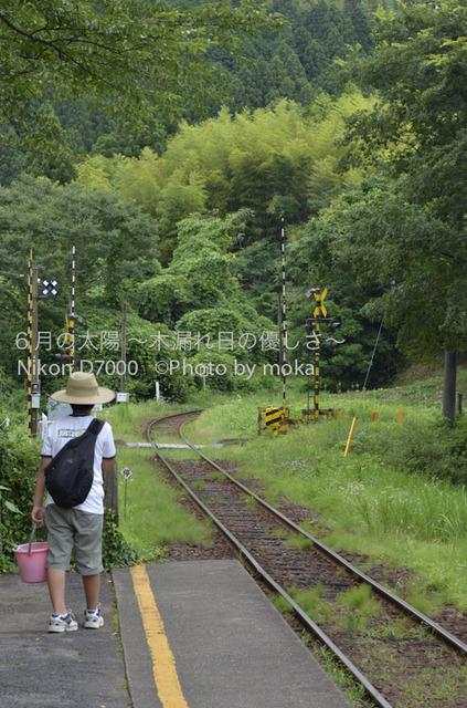 20120723_youroukeikoku51.jpg