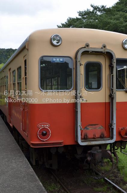 20120723_youroukeikoku65.jpg