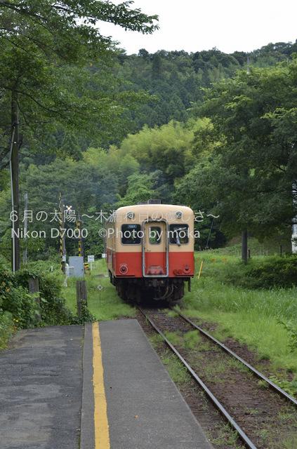 20120723_youroukeikoku70.jpg