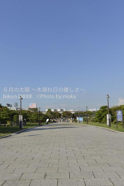 20120827_kasairinkai-park02.jpg