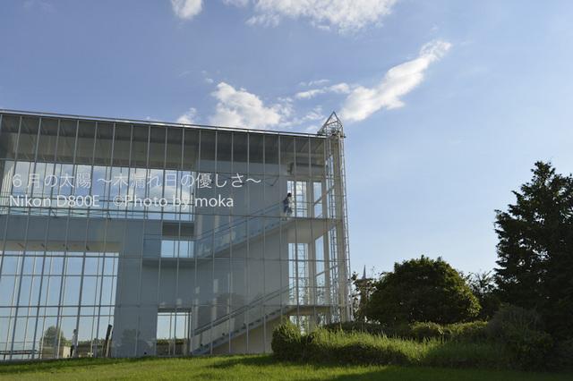 20120827_kasairinkai-park03.jpg