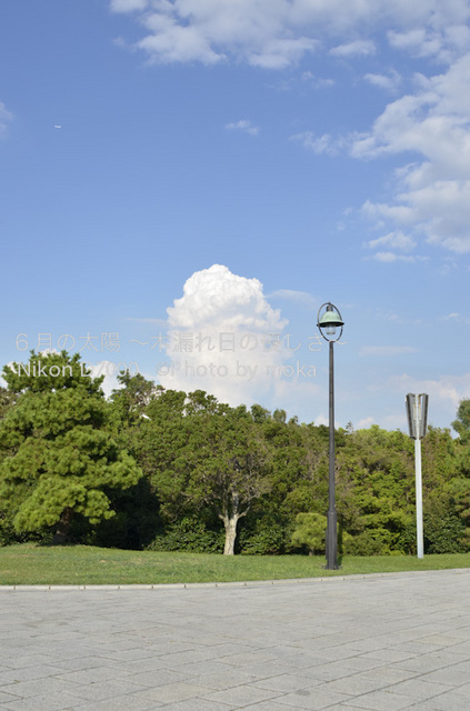 20120827_kasairinkai-park22.jpg