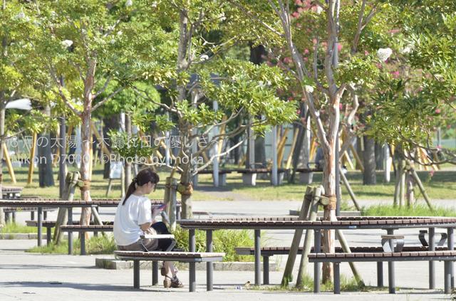 20120827_toyosu10.jpg