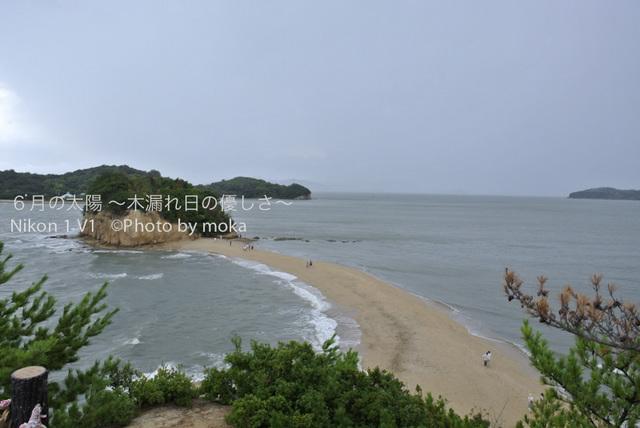 20120917-18_shodoshima53.jpg