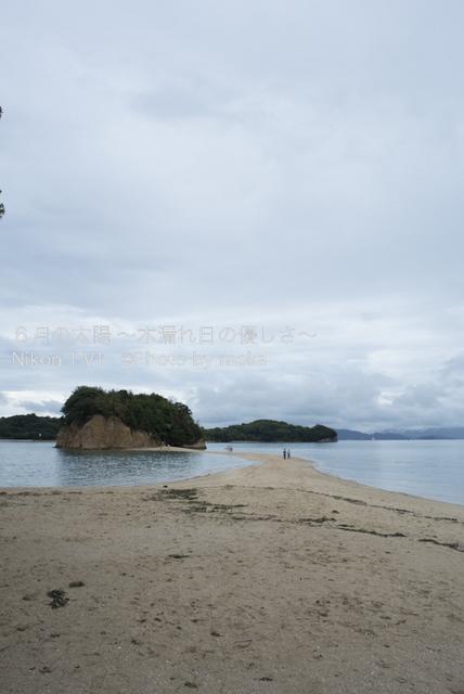 20120917-18_shodoshima57.jpg