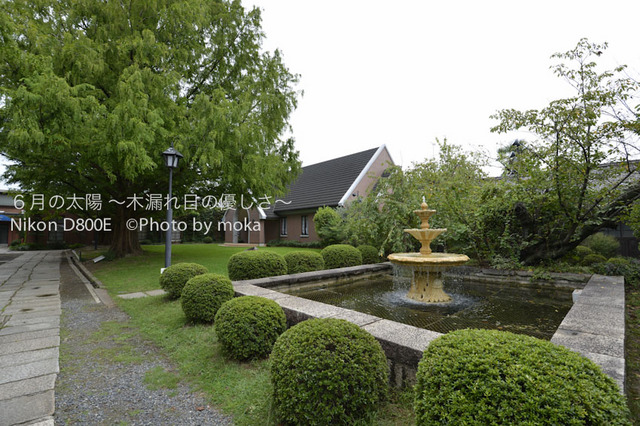 20120918-19_kurashiki026.jpg