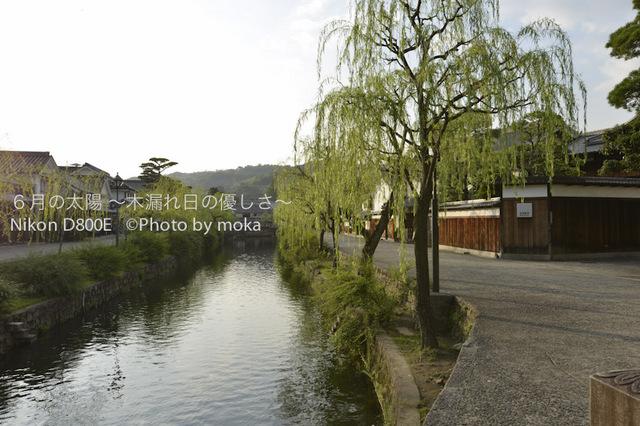 20120918-19_kurashiki091.jpg