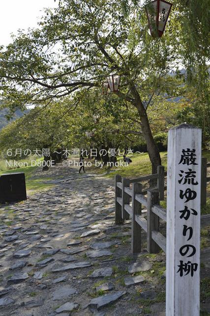 20120918_iwakuni19.jpg