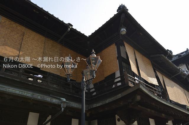 20120920-21_dogo03.jpg