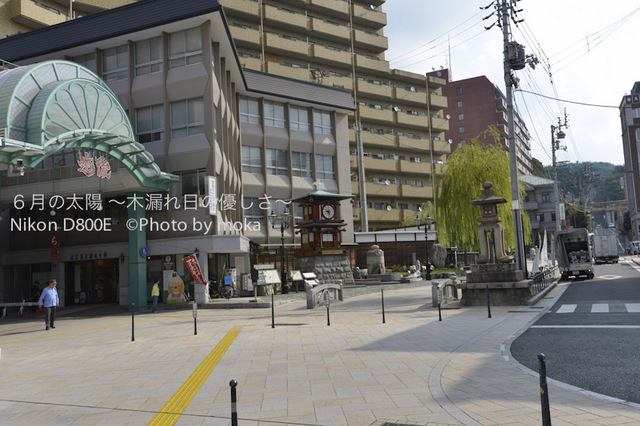 20120920-21_dogo42.jpg