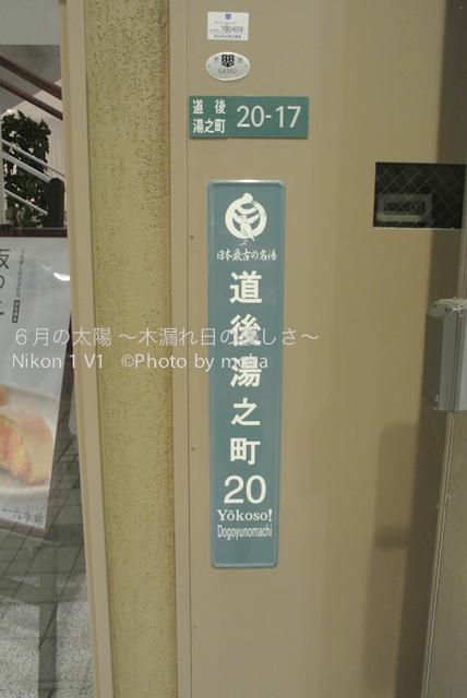 20120920-21_dogo58.jpg