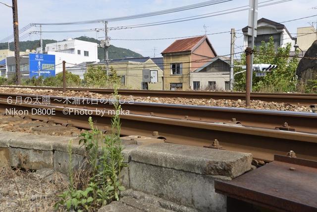 20120920_onomichi38.jpg