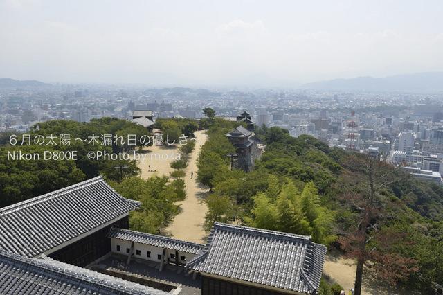 20120921_matuyama26.jpg