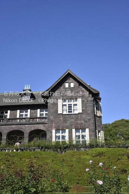 20121029_kyuhurukawatei13.jpg