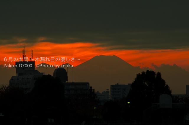 20121128_kouhokuJCT14-3.jpg