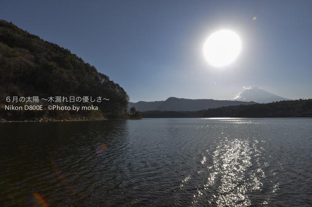 20130102_Mt.Fuji13.jpg