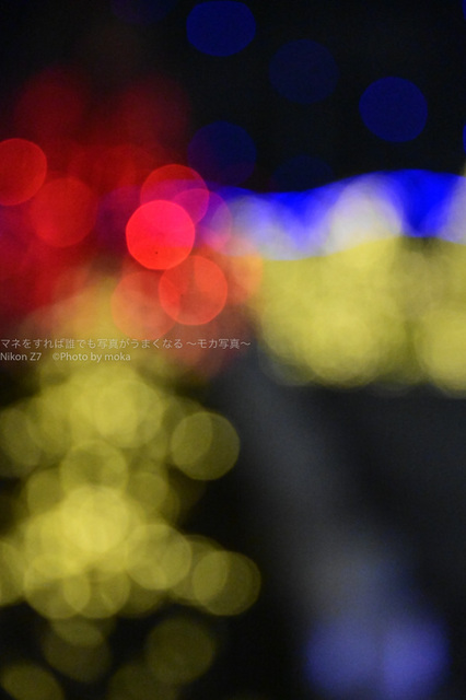 20190127_kourakuen29.jpg