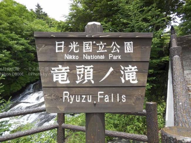 20130701_nikkou84.jpg